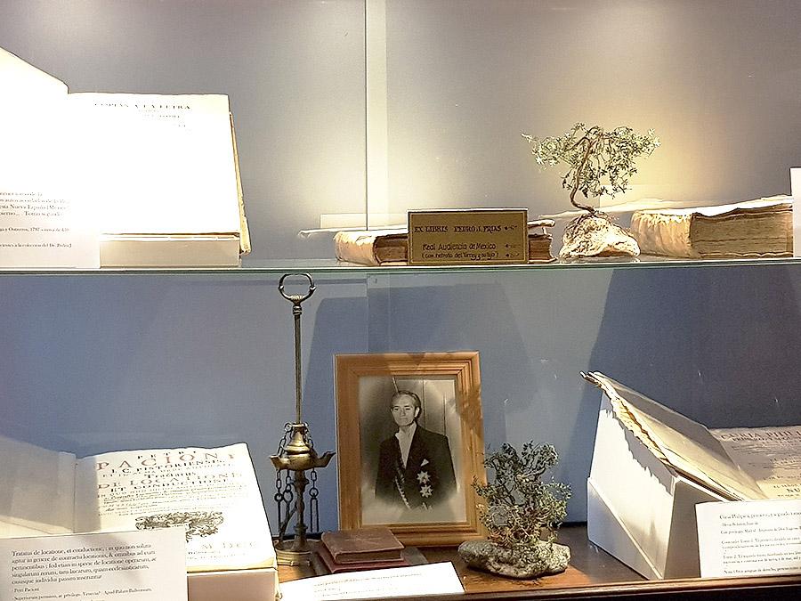 Colecciones de la Academia